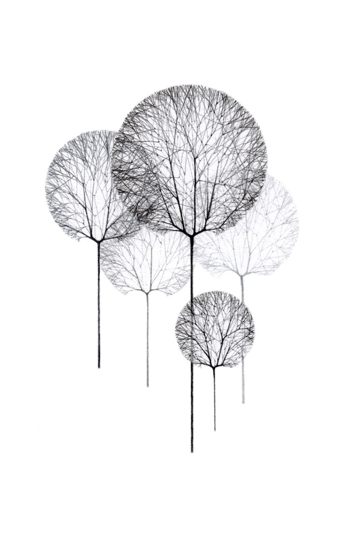 Jackie Case, Line Trees, 2014