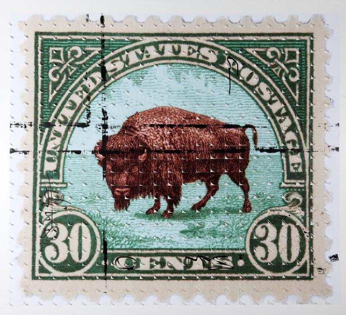 Piers Bourke, Frank The Buffalo (Green), 2014