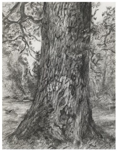 Lucian Freud, After Constable's Elm, 2003