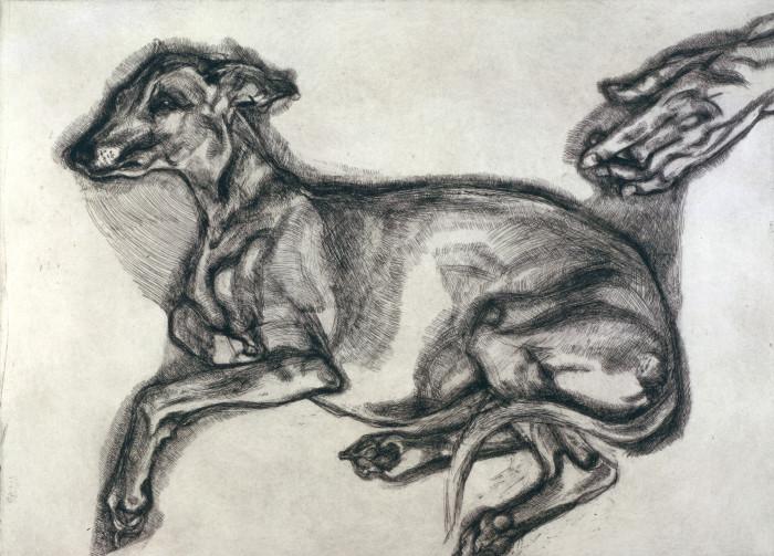 Lucian Freud, Pluto Aged Twelve, 2000