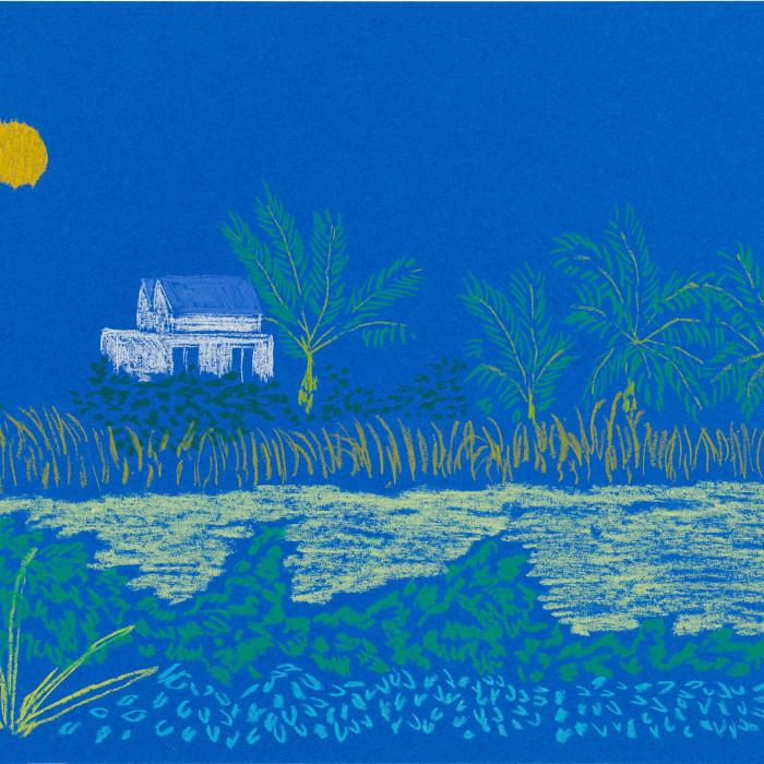 Cara Nahaul - Sunbeams and Windows