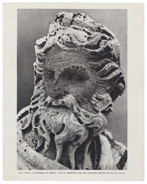 MUSÉE IMAGINAIRE, Plate 581