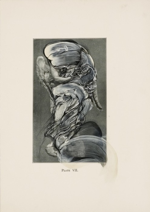 Bernini and Other Studies, Book II, Plate VII