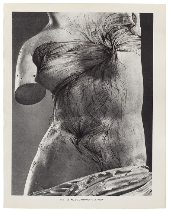 MUSÉE IMAGINAIRE, Plate 165
