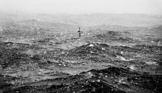 "<span class=""artist""><strong>Garlinda Birkbeck</strong></span>, <span class=""title""><em>Pintado in Snow, Drake Passage</em>, 2012</span>"