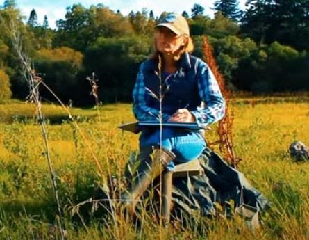Kate Rhodes, Contemporay Landscape Artist