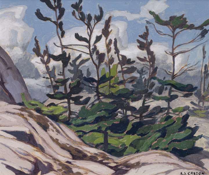 A.J. Casson Jack Pine - Picnic Island, McGregor Bay Oil on board - huile sur panneau 9 3/8 x 11 1/4 in 23.8 x 28.6 cm
