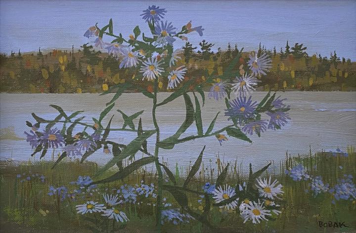 Bruno Bobak Fall Asters, 1985 Oil on canvas board 8 1/4 x 9 3/4 in 21 x 24.8 cm