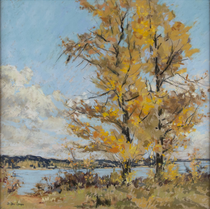 Berthe Des Clayes Autumn, Eastern Townships Pastel 13 x 13 in 33 x 33 cm
