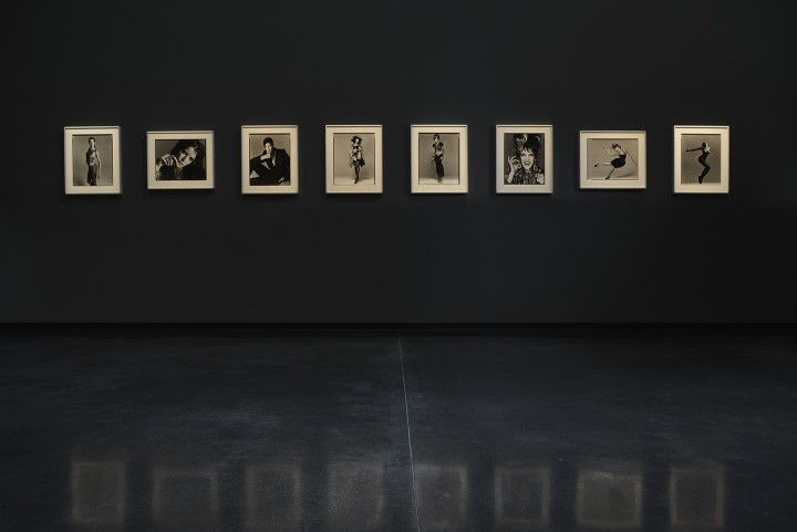 Richard Avedon: Portfolios