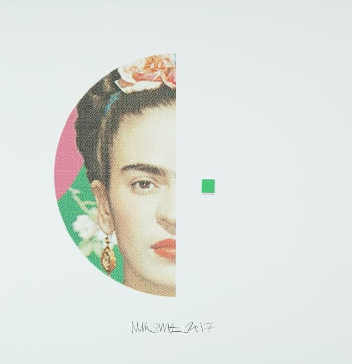 Frida Kahlo, Chromophore