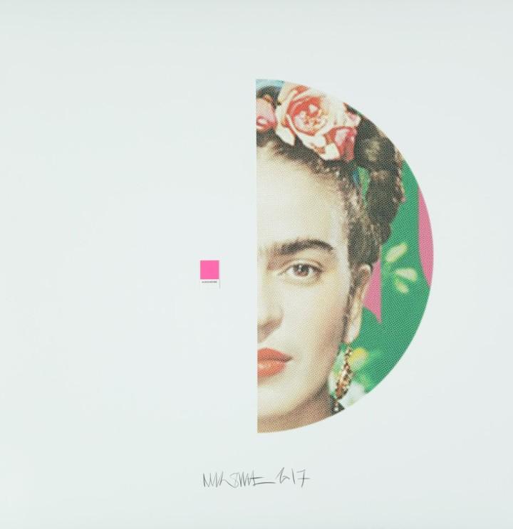 Frida Kahlo, Auxochrome
