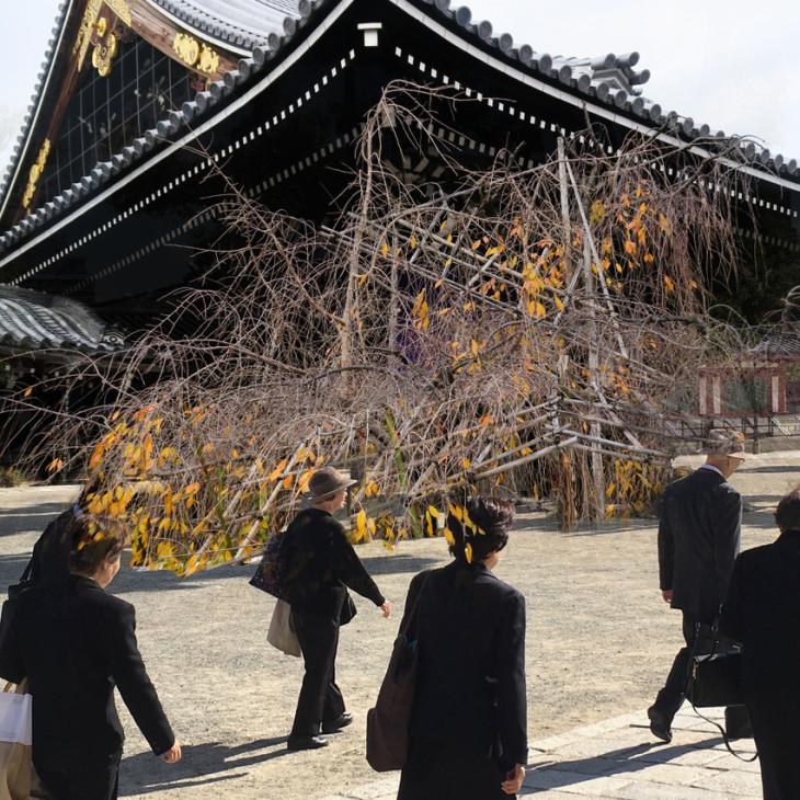 Ella Reitsma.Snoep | Japan. War & Fairytales
