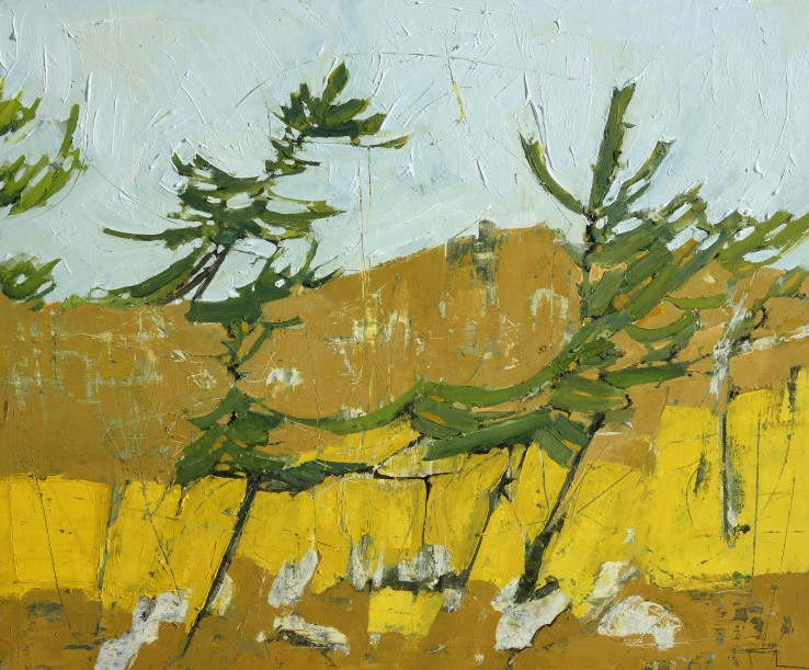Ffiona Lewis  Cadium Escarpment, 2015  Oil on gesso board  50 x 60 cm