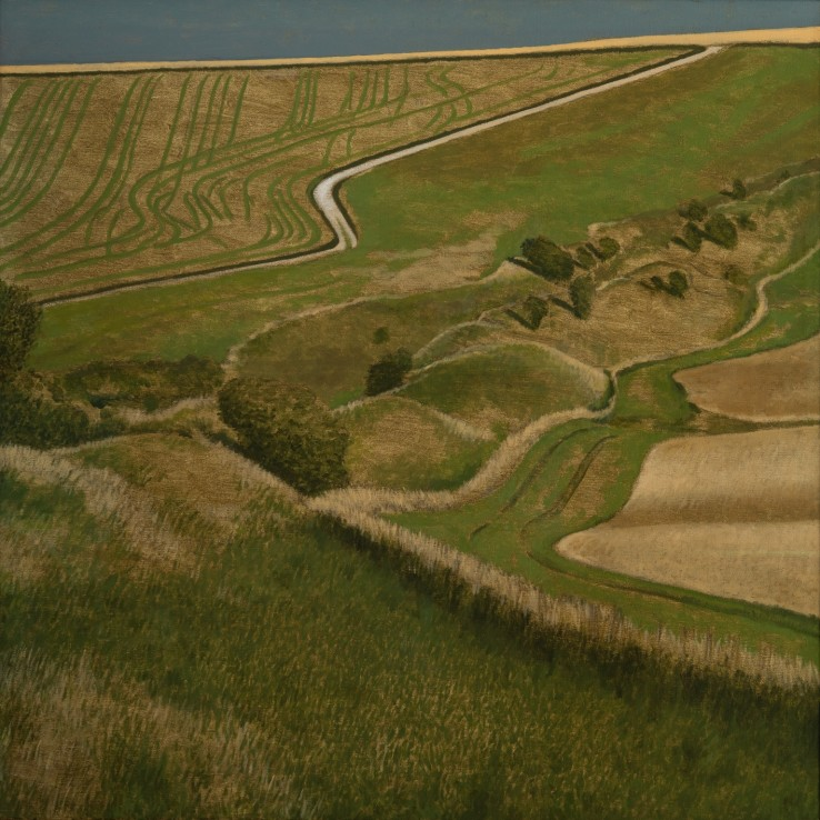 Wansdyke and Landscape, 2016  Oil on canvas  76 x 76 cm
