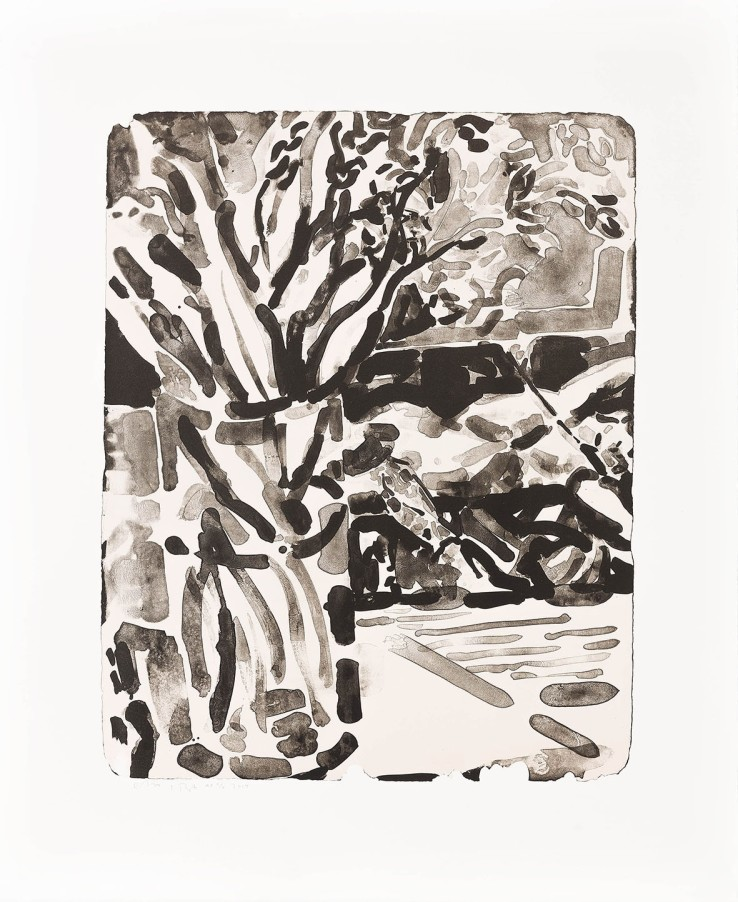 Elizabeth Peyton  Flower (After Moreau), 2014  Original lithograph printed on 300 gr. Velin d'arches paper  43.5 x 32.5 cm  Courtesy of Sadie Coles