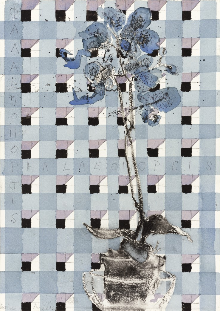 Patrick Procktor RA  Phalaenopsis, c.2000  Mixed media on paper  42 x 30 cm  Signed in pencil left corner recto