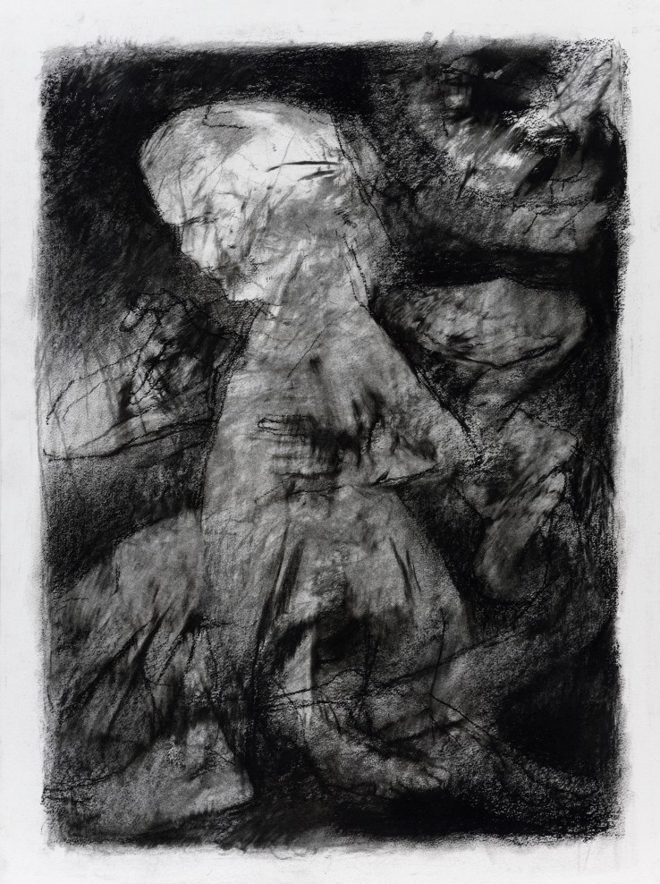 Paul Emsley  Addendum Drawing [No. 6], 2017  Signed and dated verso  76 x 56 cm  Signed and dated verso