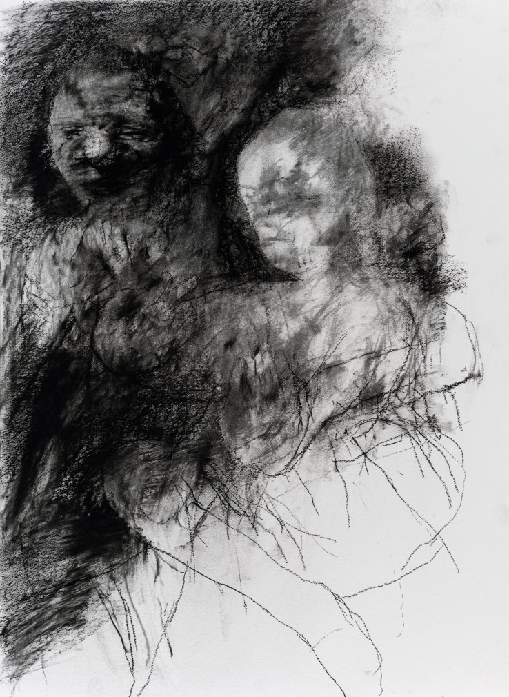 Paul Emsley  Addendum Drawing [No. 14], 2017  Chalk on paper  75 x 56 cm  Signed and dated verso