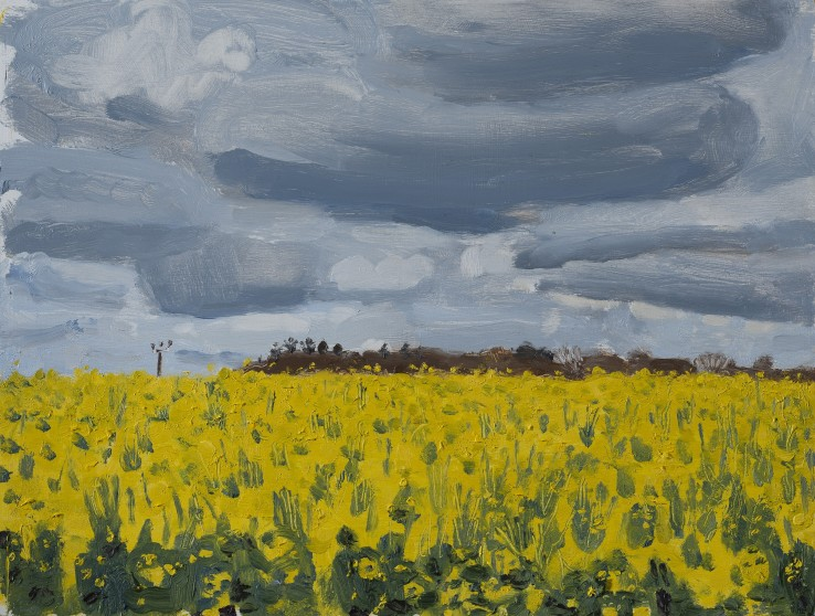Danny Markey  Rapeseed Field and Grey Clouds  Oil on board  22 x 29.2 cm  Signed and dated verso