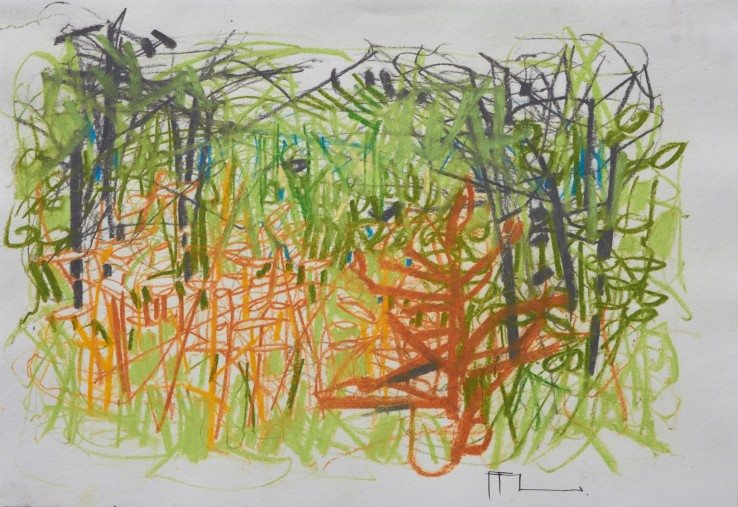 Ffiona Lewis  The Green Tapestry , 2019  Pastel on paper  20.5 x 29.5 cm