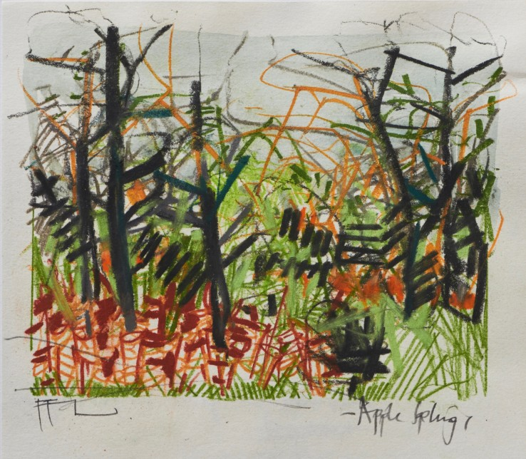Ffiona Lewis  Mulligatawny - Apple Saplings , 2019  Mixed Media on Paper  17.7 x 20.5 cm