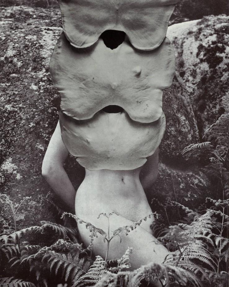 Linder  Merry Maiden (v) , 2021  Photomontage  27 x 21 cm