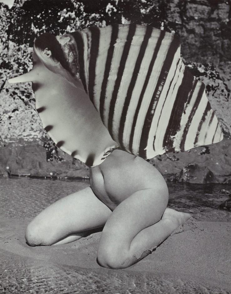 Linder  Merry Maiden (ii) , 2021  Photomontage  27 x 21 cm