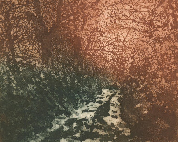 Norman Stevens ARA  The Darkling Thrush, 1976  Etching and aquatint  44 x 54 cm  A trial colour proof, before the edition of  Signed, dated and inscribed below image