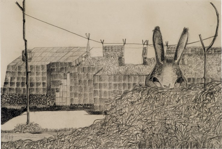 Anne Dunn  Landscape with Donkeys Ears, 1949  Black conté crayon on paper  48.2 x 33 cm  Initialled, dated and inscribed: 'Cashel Bay 1949'