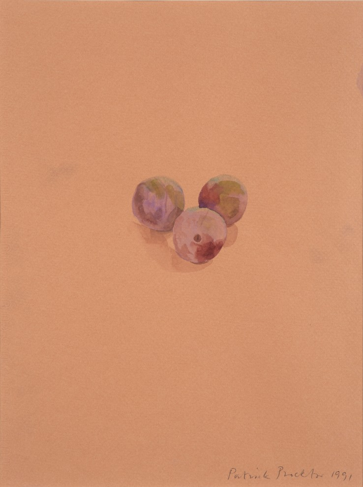 Patrick Procktor RA  Plum, 1991  Watercolour on coloured paper  30 x 23 cm  Signed and dated lower right