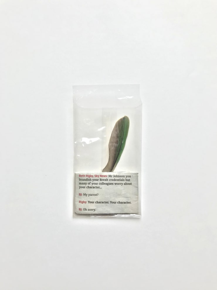 Hermione Spriggs Ca, 2019 Excerpt from London Evening Standard, June 12th 2019, specimen envelope, feather (Indian ring-neck parakeet) found in London by the artist