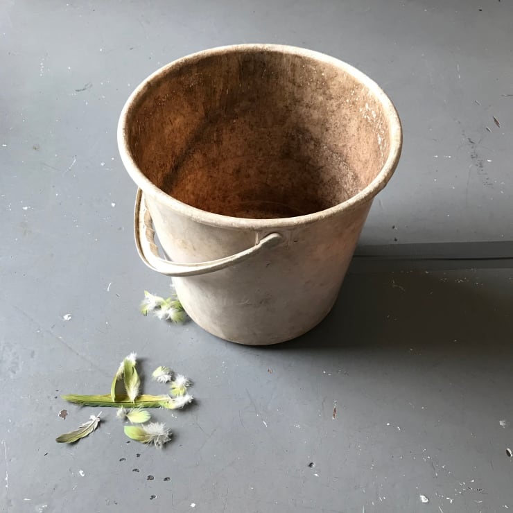 Hermione Spriggs untitled (bucket), 2019 Arthur Spriggs' bucket, sounds recorded by Arthur Spriggs (digital transfer of reel-to-reel), speaker, Indian ring-neck parakeet feathers (collected by the artist)