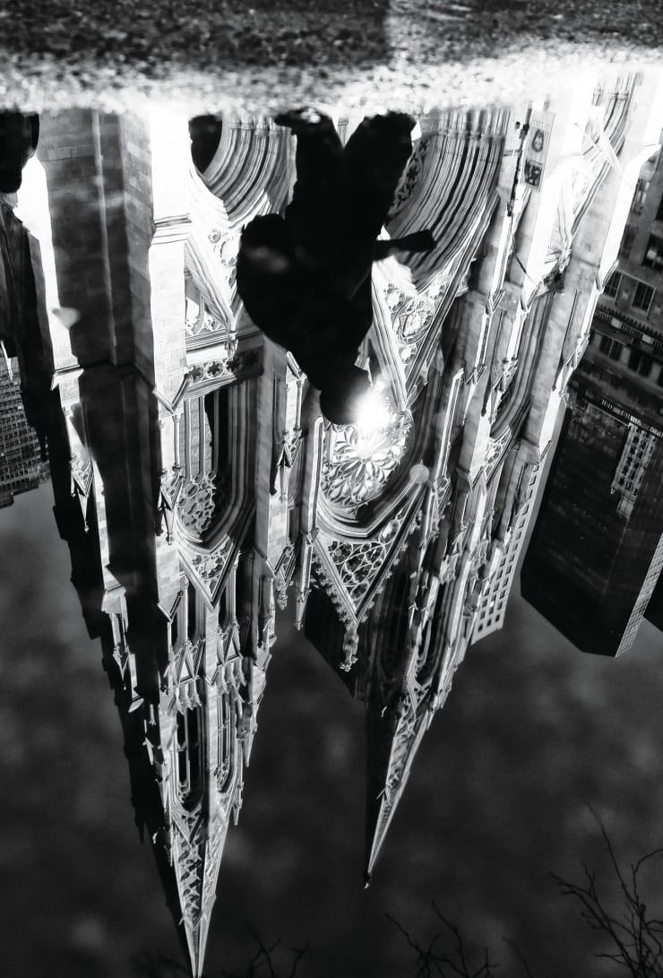 PHIL PENMAN, St Patricks Cathedral, New York, 2018