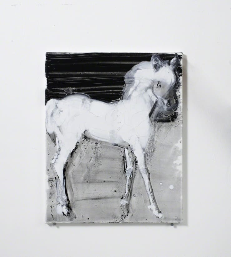 Ilona Szalay White Horse, 2016 Oil on canvas 19 7/10 × 15 7/10 in 50 × 40 cm
