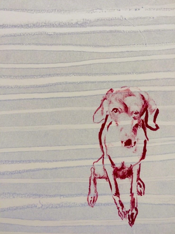 Shelly Tregoning Studio Dog, 2017 drawing on paper 12 1/5 × 9 1/10 in31 × 23 cm