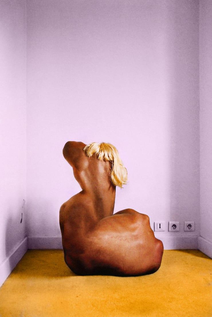Brice Chatenoud, Monstre à la Perruque, 2011