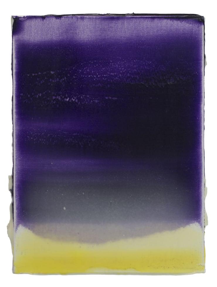 Nejat Sati Hepatica Americana, 2019 Acrylic on canvas 36 x 27 cm 14 1/8 x 10 5/8 in