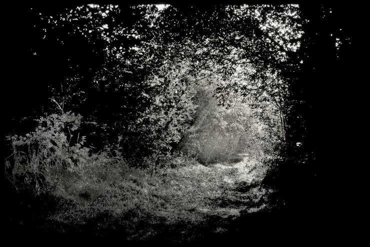 Choi Soowhan Emptiness - Forest Path, 2019 LED Laminate 153 x 229.5 x 10 cm 60.2 x 90.4 x 4 in