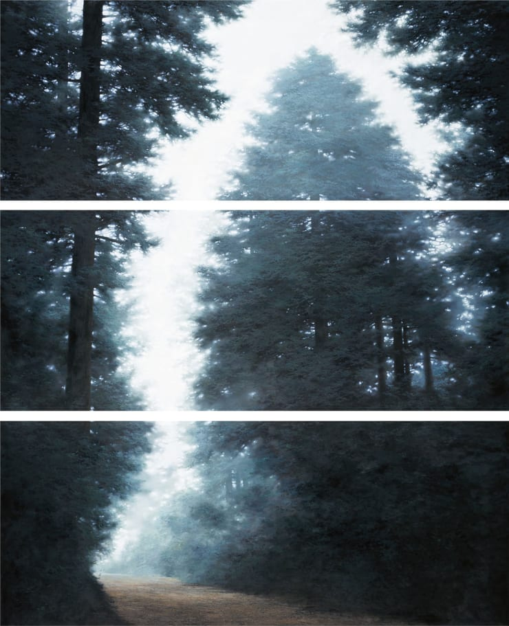 Do Sungwook Condition-Light II (Triptych), 2011 Oil on canvas 80 x 200 cm each 31.5 x 78.7 in each