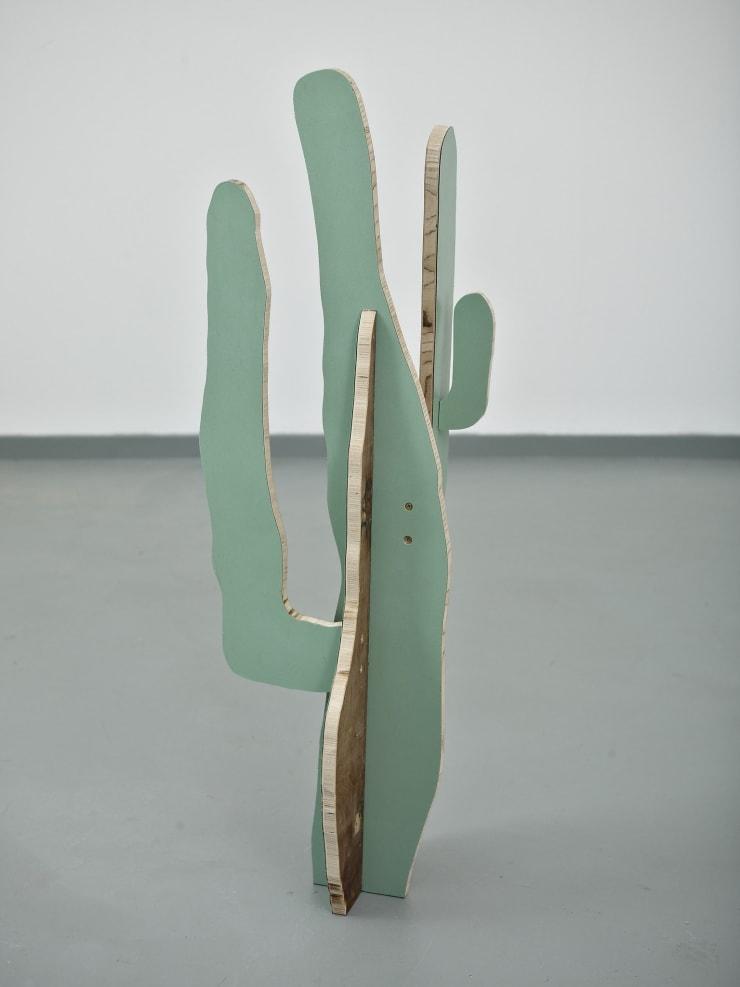 Paul Merrick Cactus (Saguaro), 2014