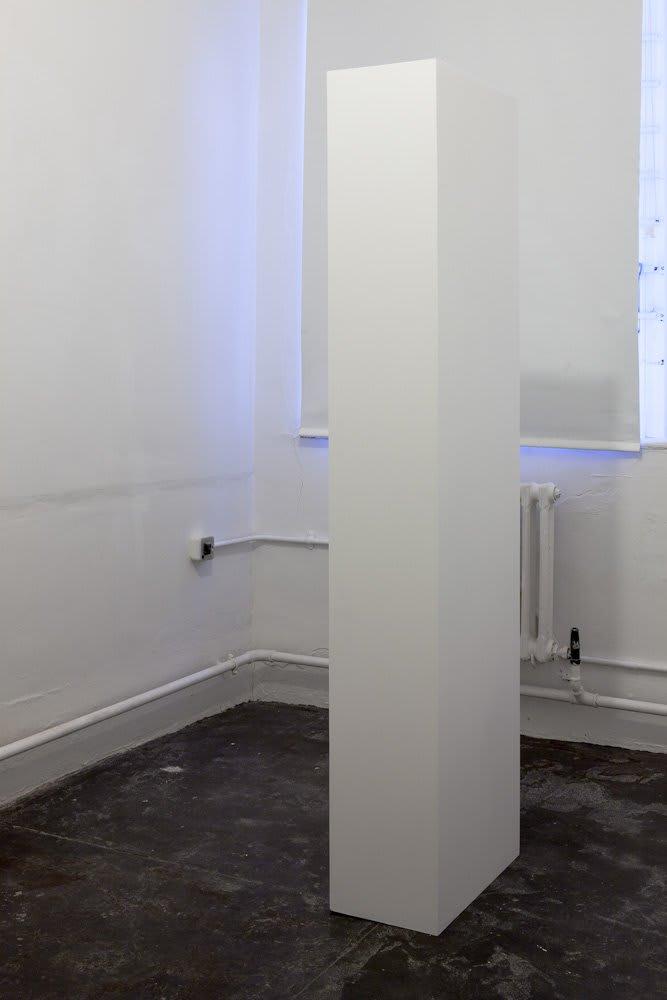 Marcus Coates, Marcus Coates, White British, 185x49x26cm, 2012