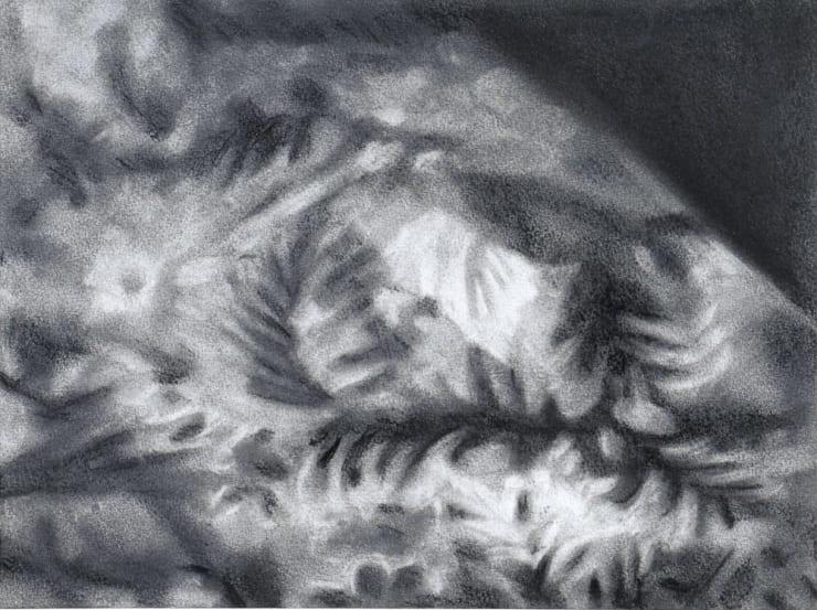 Rachel Lancaster, Carpet, 2007