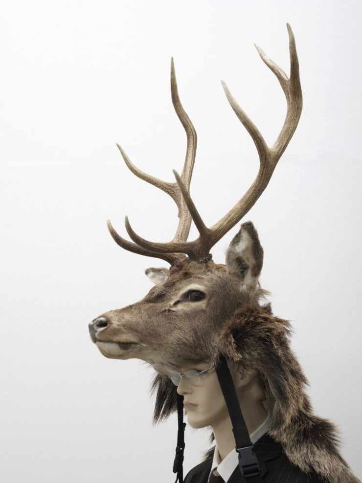 Marcus Coates, Red Deer Stag, 2007
