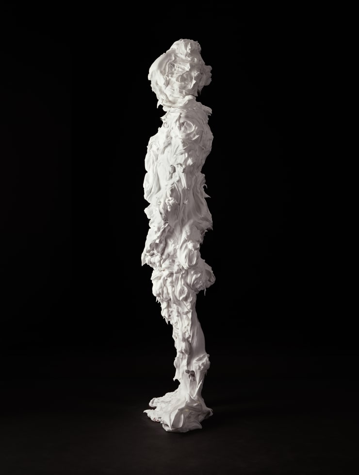 Marcus Coates Iron Prominent, Notodonta dromedarius (Moth) Self Portrait, shaving foam, 2013
