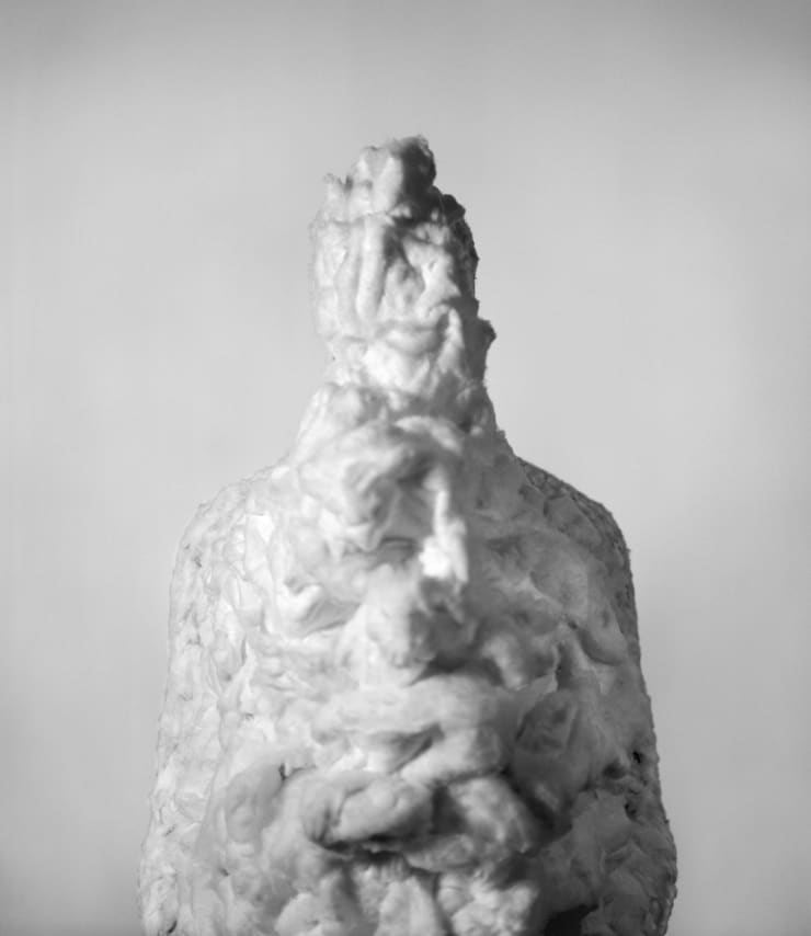 Marcus Coates, Common Slug, Arion hortensis, Self portrait, cotton wool, 2013
