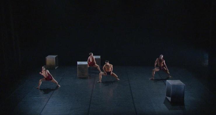 Phoenix Dance Theatre, Calyx, 2017