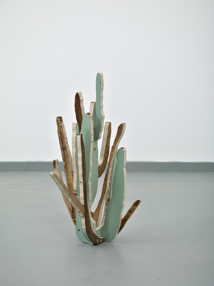 Paul Merrick Cactus (Organ Pipe), 2014