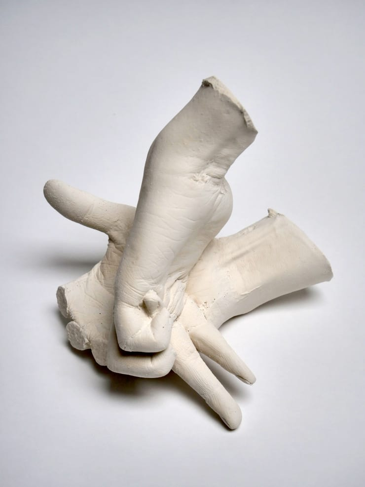 Marcus Coates Extinct Animals (Yangtze River Dolphin), 2018 Plaster of Paris, cast from the artist's hands whilst performing the extinct animal's shadow 17 x 22.5 x 19 cm 6 3/4 x 8 7/8 x 7 1/2 in