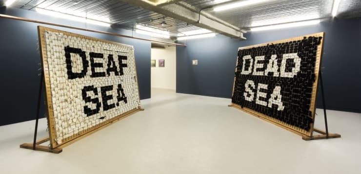 Matt Stokes, Dead Sea Deaf Sea, 2017